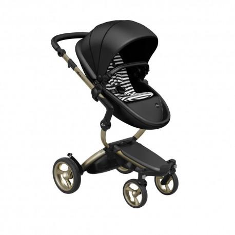 Mima Xari - Gold Chassis + Black Seat